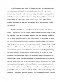 mercy killing in of mice and men essay zoom zoom zoom