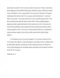 essay on mirror image by lena coakley